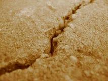 jordskalv Arkivfoto