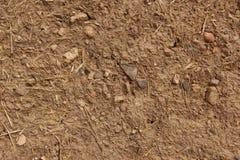 Jordvägg Arkivfoto