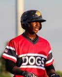 Jorge Mateo Charleston RiverDogs Stock Image