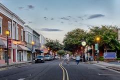 Jork Carolina bielu róży południowy miasto obrazy royalty free