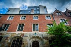 202 Jork ulica na kampusie uniwersytet yale, w Nowej przystani, Fotografia Stock