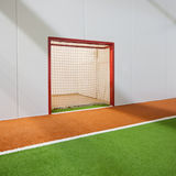 Jorky ball field Stock Photography