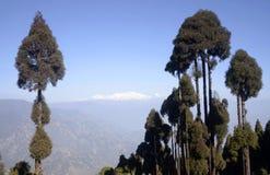 从Jorphokri的Kanchenjunga。 免版税库存照片