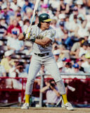Jose Canseco, Oakland A Photographie stock