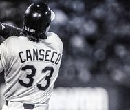 Jose Canseco, Oakland Athletics #33 Fotografia de Stock