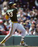 Jose Canseco Royalty Free Stock Image