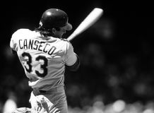 Jose Canseco Oakland A ` s fotografering för bildbyråer