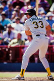 Jose Canseco, Oakland A's Stock Images