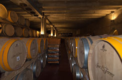 Jose Ferrer Vineyard Images stock
