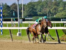 Jose Ortiz on U S Navy Cross. Horses are noses apart just past the sixteenth pole as U S Navy Cross beats Till Then, on the rail, in a thrilling finish at stock photo