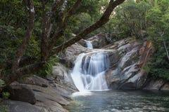 Josephine Falls in Queensland, Australia Stock Photos