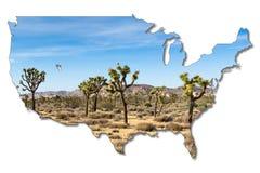 Joshua-Bäume im Nationalpark Joshua-Baums, Kalifornien, USA stockfoto
