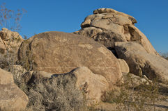 Joshua boulder park drzewo Zdjęcia Stock
