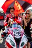 Joshua Brookes-Pilot von Superbikes SBK lizenzfreie stockfotos
