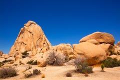 Joshua drzewa parka narodowego skrzyżowania skała Kalifornia Zdjęcie Royalty Free