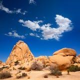 Joshua drzewa parka narodowego skrzyżowania skała Kalifornia Zdjęcia Royalty Free