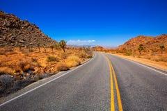 Joshua Tree-boulevardweg in de woestijn Californië van de Yuccavallei Stock Afbeeldingen