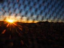 Joshua Tree California på solnedgången arkivbilder