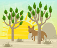 Joshua tree and coyote Stock Photography