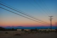 Joshua Tree Desert Images libres de droits