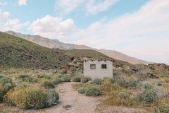 Joshua Tree Desert imágenes de archivo libres de regalías