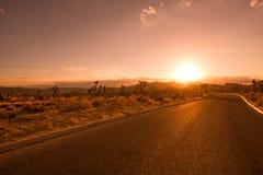 Joshua Tree Desert Road. At Sunset. Park Interior Road in the Joshua Tree National Park in California, USA Stock Images