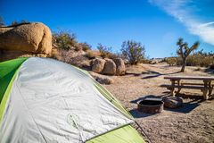 A green and white tourist tent with a view of nature in Joshua Tree National Park stock photo