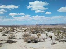 Joshua Tree National Park Desert, California immagini stock