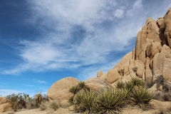 Joshua Tree National Park Desert Landscape Stock Photos