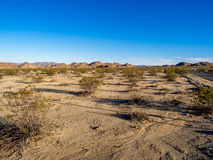 Joshua Tree National Park, Royalty Free Stock Photography