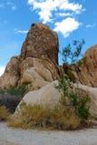 Joshua Tree National Park, desierto de Mojave, California Foto de archivo