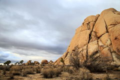 Joshua tree national park. A huge rock formation at Joshua tree national park Royalty Free Stock Photos