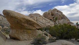 Joshua Tree National Park Kalifornien, USA Arkivfoto