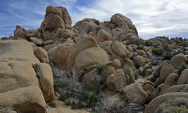 Joshua Tree National Park, la Californie, Etats-Unis Image libre de droits