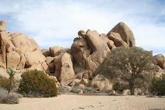Joshua Tree National Park Landscape Image stock