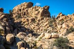 Joshua Tree National Park. Landscape Stock Image