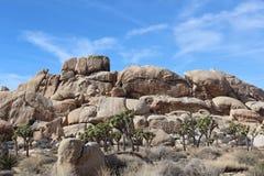 Joshua Tree National Park Landscape Stock Photo