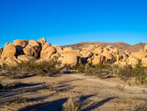 Joshua Tree National Park Stock Image