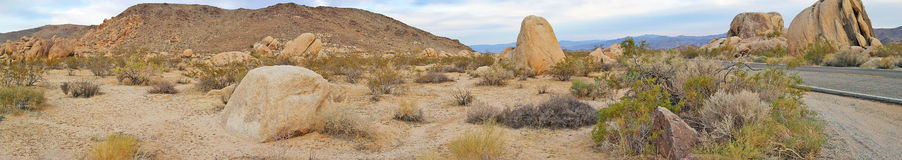 Joshua Tree National Park Landscape - Panorama Royalty Free Stock Photo