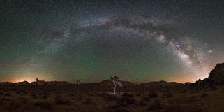 Joshua Tree National Park Milky Way Panorama Royalty Free Stock Photo
