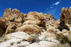 Joshua Tree National Park, Mojave Desert, California Royalty Free Stock Image