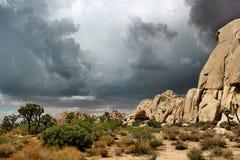 Joshua Tree National Park, Mojave-Wüste, Kalifornien, USA Lizenzfreie Stockfotografie