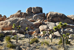 Joshua Tree National Park, riesige Felsen lizenzfreies stockfoto