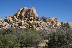 Joshua Tree National Park - Rotsvorming Royalty-vrije Stock Fotografie