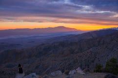 Joshua Tree National Park Sunset Royalty-vrije Stock Foto's