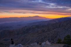 Joshua Tree National Park Sunset Royalty Free Stock Photos