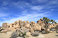 Joshua tree national park. Unique rock formation at Joshua tree national park on a sunny afternoon Royalty Free Stock Photos