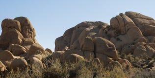 Joshua Tree National Park VI Royalty Free Stock Photography