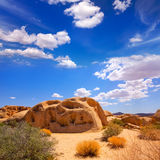 Joshua Tree National Park Yucca Valley in Mohave California Royalty Free Stock Photo