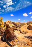 Joshua Tree National Park Yucca Valley in Mohave desert Californ Royalty Free Stock Photos